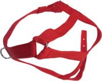 DCS Dog Harness & Leash(Medium, Red)