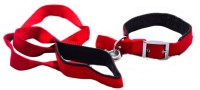Paw Zone Pawzone Dog Collar & Leash(Medium, Red)