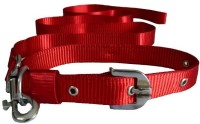 Paw Zone Dog Collar & Leash(Extra Large, Red)