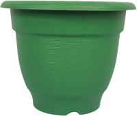 Easy Gardening 10 Inch Elegance Plant Container Set(Pack of 6, Plastic)