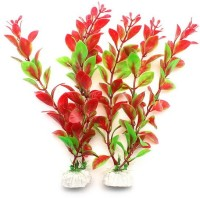 Priyathams Imported Beautiful Tomato Colour Aquarium/ Fish Tank Grass Seed(30 per packet)