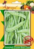 Airex Gwarphali (Cluster Bean) Seed(15 per packet)