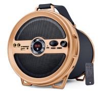 iball Karaoke Barrel v2.0 Music Karaoke Barrel V 2.0 Bluetooth Portable Speaker With Wireless MIC & Remote Built in FM Radio Outdoor PA System(120 W)