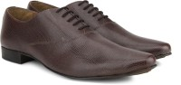 Knotty Derby Men Lace up For Men(Brown)
