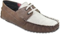 TEN Funky and Stylish Driving Shoes For Men(Brown)