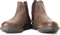 GAS Dexter Boots For Men(Brown)
