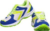 The Scarpa Shoes Running Shoes(Blue)