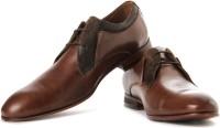 Steve Madden Ascott Lace Up Shoes For Men(Tan)