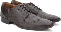 Knotty Derby Wing Cap Brogue Lace up For Men(Brown)