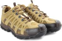 Woodland Men Outdoor Shoes(Brown)