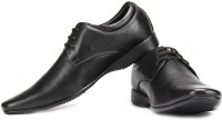 Franco Leone Lace Up Shoes For Men(Black)