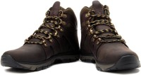 Timberland EK Trailbreak Mid WP Boots For Men(Green, Brown)