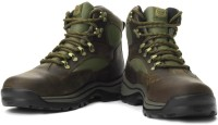 Timberland Chocorua Trail Boots For Men(Brown)