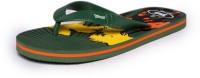 guys and dolls Boys & Girls Slipper Flip Flop(Green)