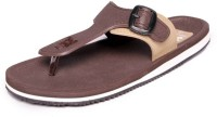 guys and dolls Boys Slipper Flip Flop(Brown)