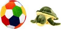Alexus Football And Turtle  - 32 cm(Multicolor)