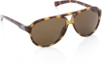 CK Jeans Oval Sunglasses(Brown)