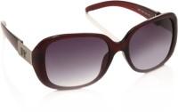 MTV MTV-1007-162 Over-sized Sunglasses(Violet)