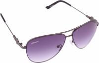 Amaze Aviator Sunglasses(Grey)