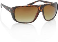 Fastrack P261BR2 Rectangular Sunglasses(Brown)