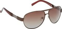 Riyan R 14 Aviator Sunglasses(Brown)