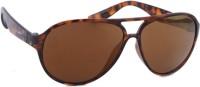 Joe Black Aviator Sunglasses(For Men & Women, Brown)