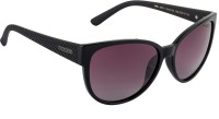 Farenheit Over-sized Sunglasses(Violet)