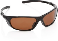 Timberland Round Sunglasses(Brown)