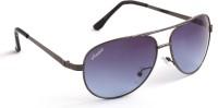 Amaze Aviator Sunglasses(Blue)