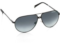 Carrera Aviator Sunglasses(Blue)