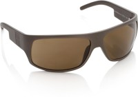 Sisley Round Sunglasses(Brown)