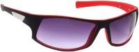 Eyeland Round Sunglasses(For Men & Women, Violet)
