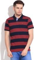 Arrow Sports Striped Men's Polo Neck Blue, Maroon T-Shirt