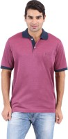 Furore Solid Men's Polo Neck Maroon T-Shirt