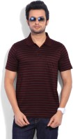 Proline Striped Men's Polo Neck Maroon T-Shirt