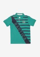 Nautica Boys Cotton T Shirt(Green, Pack of 1)