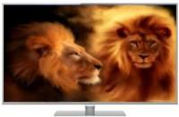 Panasonic (42 inch) Full HD LED TV(TH-L42DT50D)