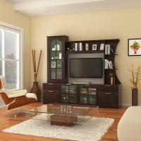 HomeTown Mandrin Wallunit Engineered Wood TV Entertainment Unit(Finish Color - Wenge)