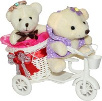 Anishop Gift Cycle Couple Teddy Romantic Love Valentine Day Gift Showpiece Gift Set