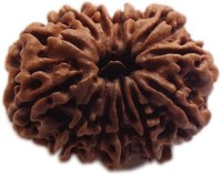 ByCue Certified 11 Mukhi Rudraksha Nepal Best Quality Wooden Yantra(Pack of 1)