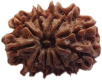 ByCue Certified 10 Mukhi Rudraksha Nepal Best Quality Wooden Yantra(Pack of 1)