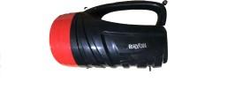 Rayon Lights FL-930 Torch Light