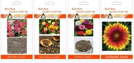 Alkarty Balsam, Portulaca, Zinnia, Gaillardia summer flower seeds pack of 20 each Seed(20 per packet)