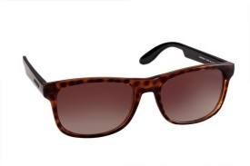 9015a1dc7c Carrera Sunglasses - Buy Carrera Sunglasses Online at Best Prices in India  - Flipkart.com