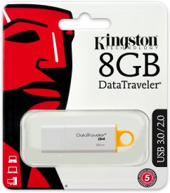 Kingston DataTraveler G4 8 GB Pen Drive