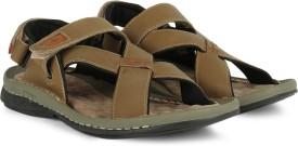 Lee Cooper Men OLIVE P1 Sports Sandals