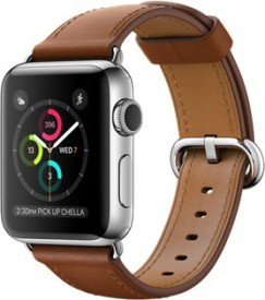 Apple Watch Stainless Steel Case with Saddle...