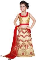 Sonika Girl's Lehenga Choli Ethnic Wear Embroidered Lehenga, Choli and Dupatta Set(Red, Pack of 1)
