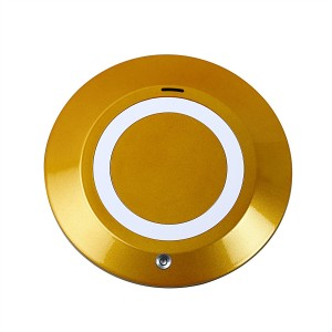 CELESTECH CS909-1 Golden Portable Car Air Purifier