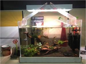 btree white led aquarium light freshwater planted tank best price in